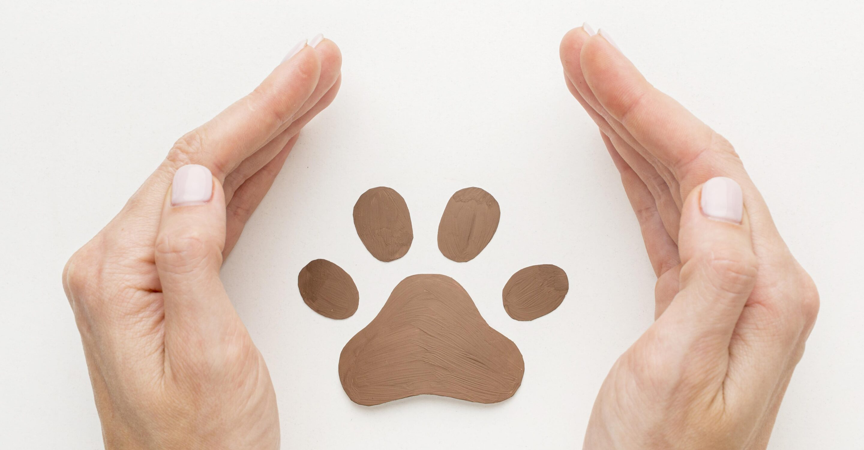 mano e impronta zampa animale