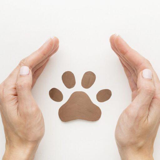 Tutela dei diritti animali