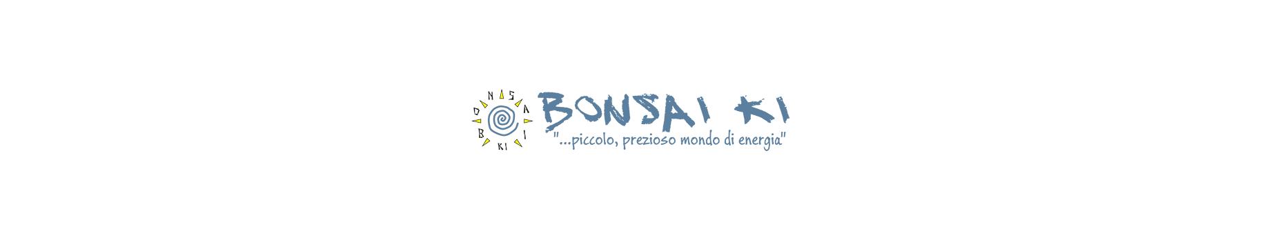 associazione bonsai ki ASD logo