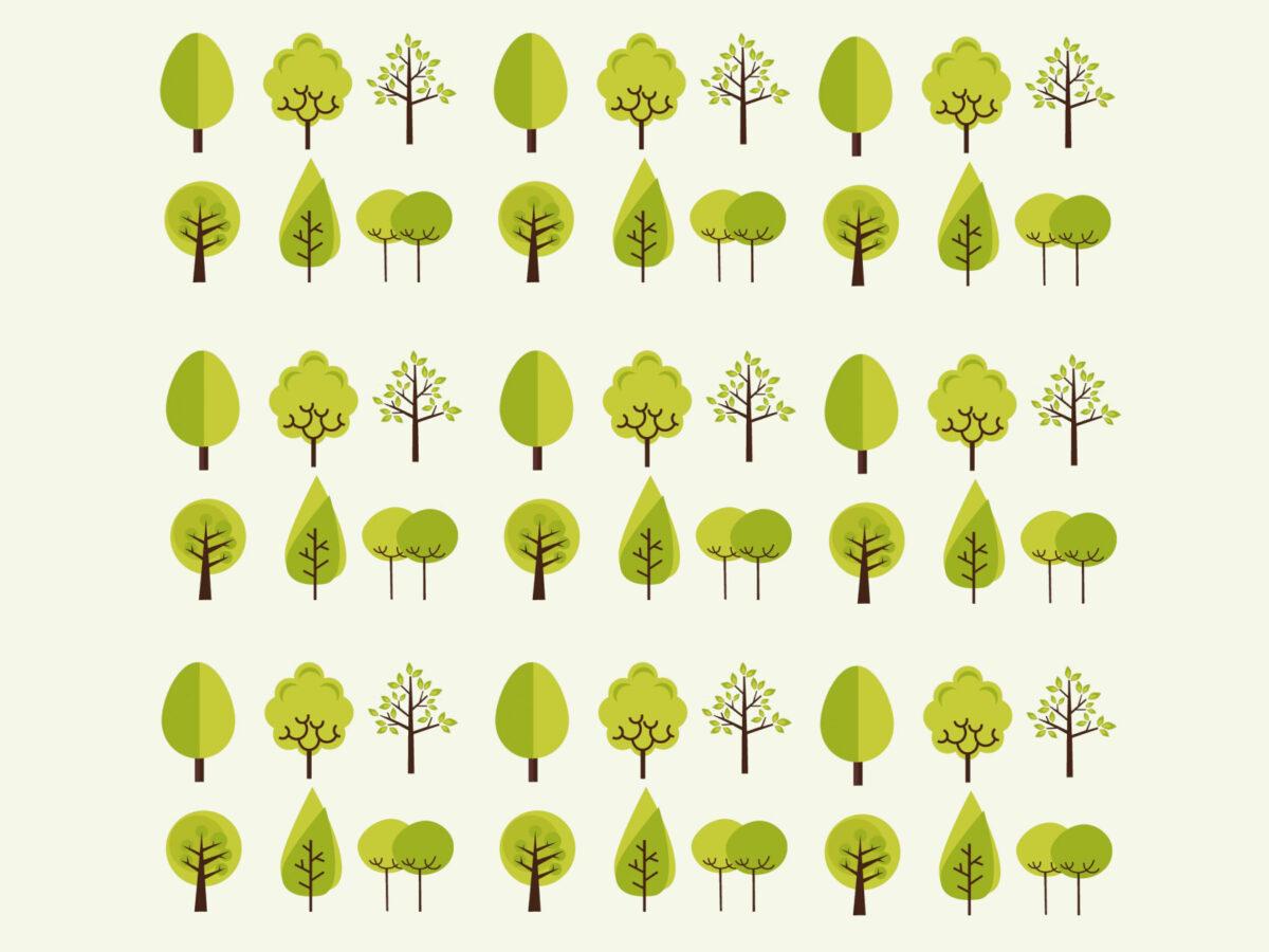 Verde, cominciate dal Giardino Marx le piantumazioni compensative: 180 nuovi alberi in città