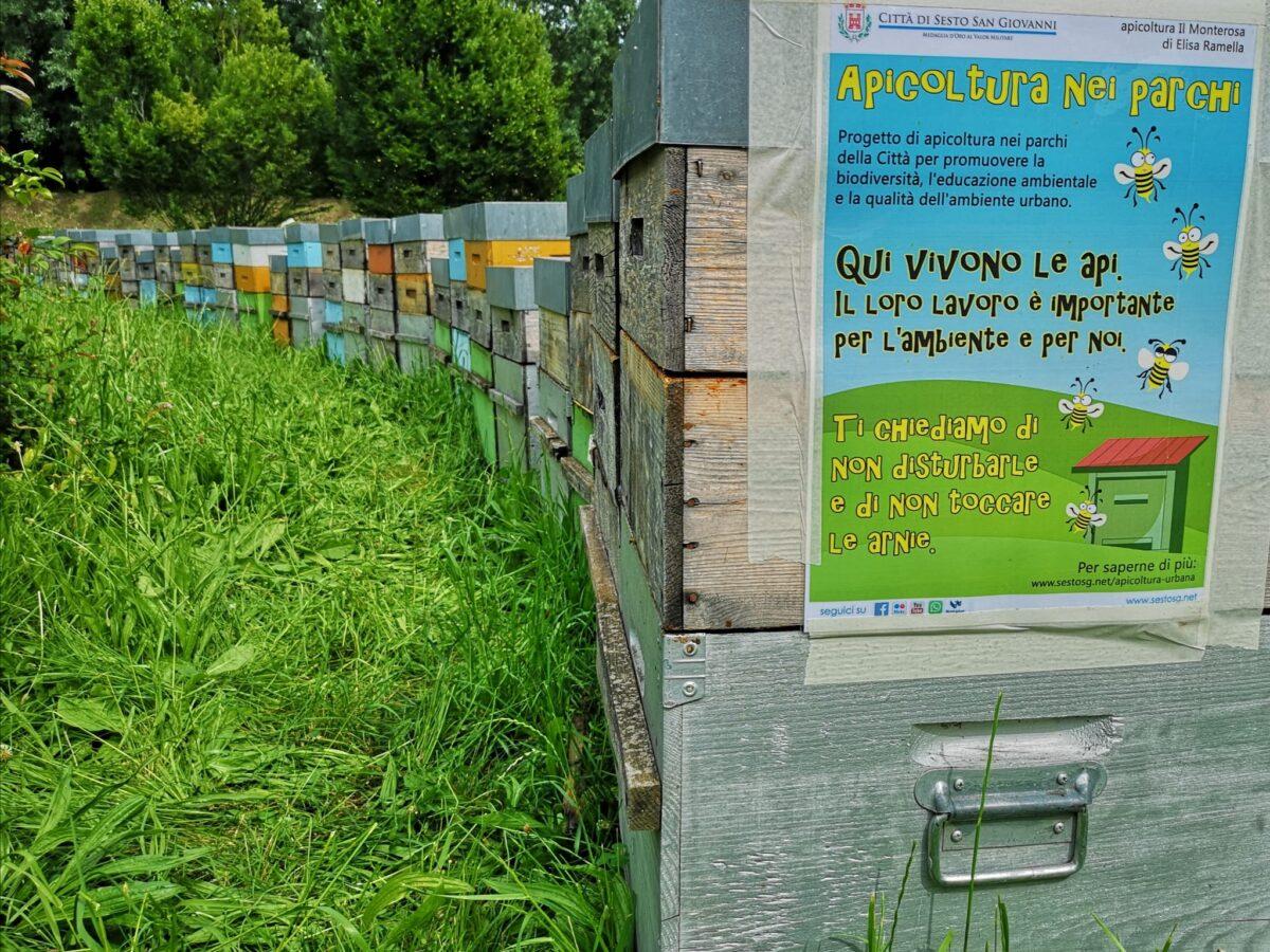 Apicoltura nei parchi in città