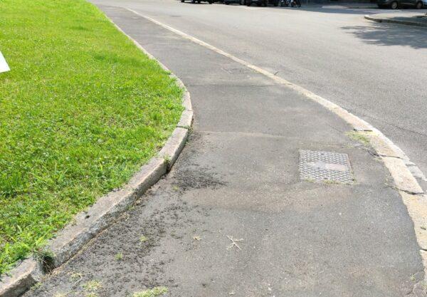 Taglio dell'erba interstiziale