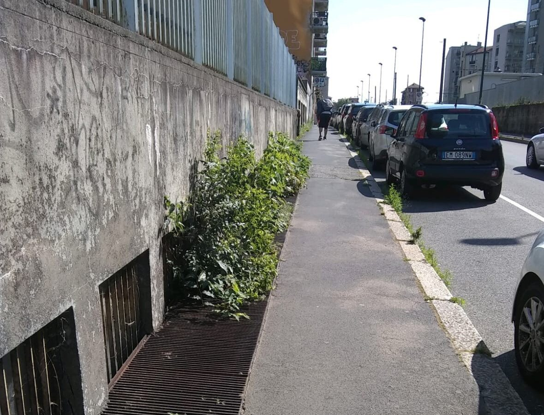 via piave taglio erba