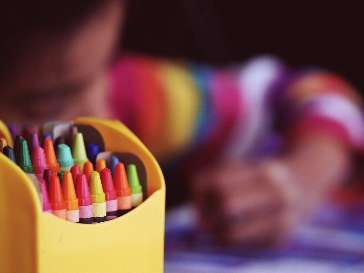 """Disabilità minori, Pizzochera: """"Nuove professionalità pedagogiche nelle scuole"""""""