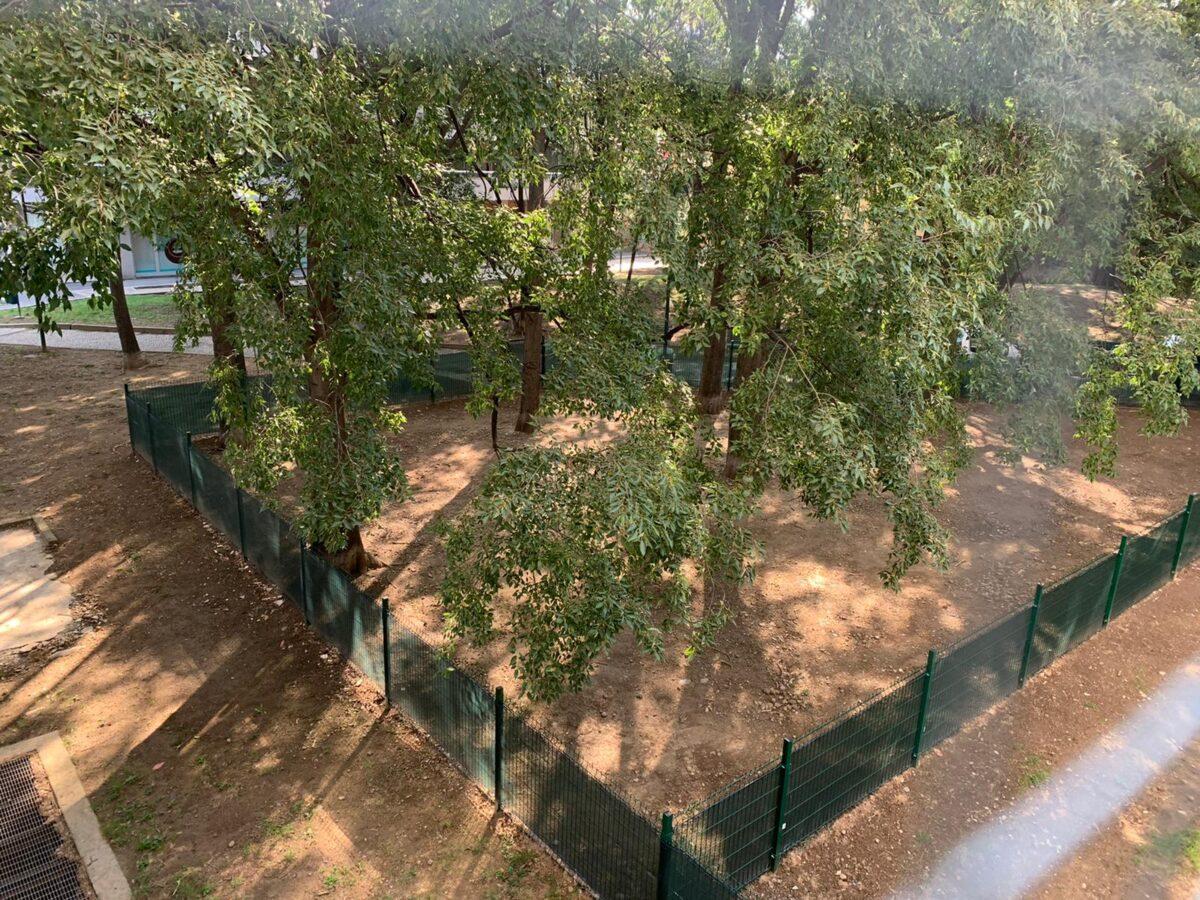 La nuova area cani nel giardino Crisafulli è pronta!