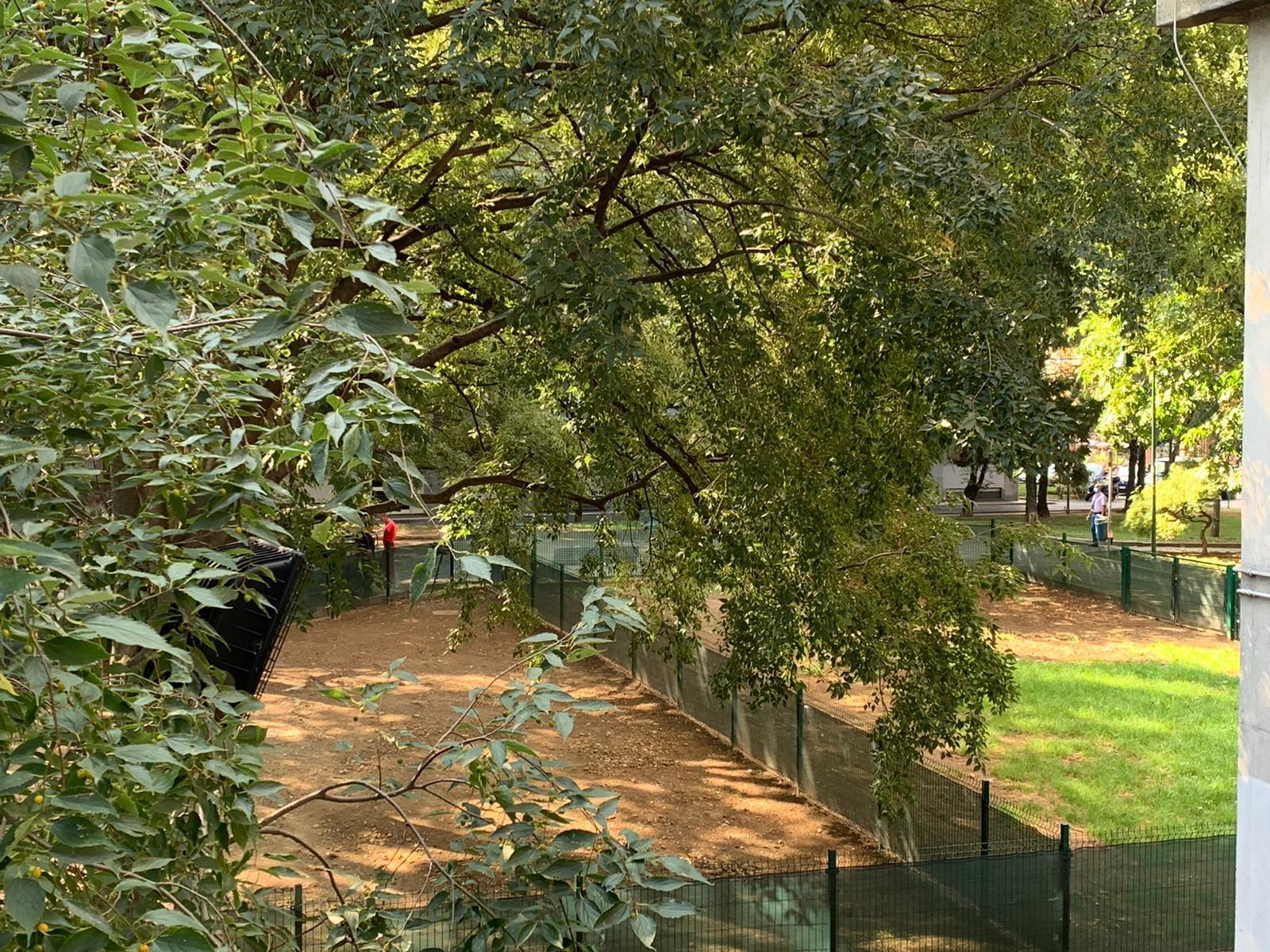 area cani giardino crisafulli