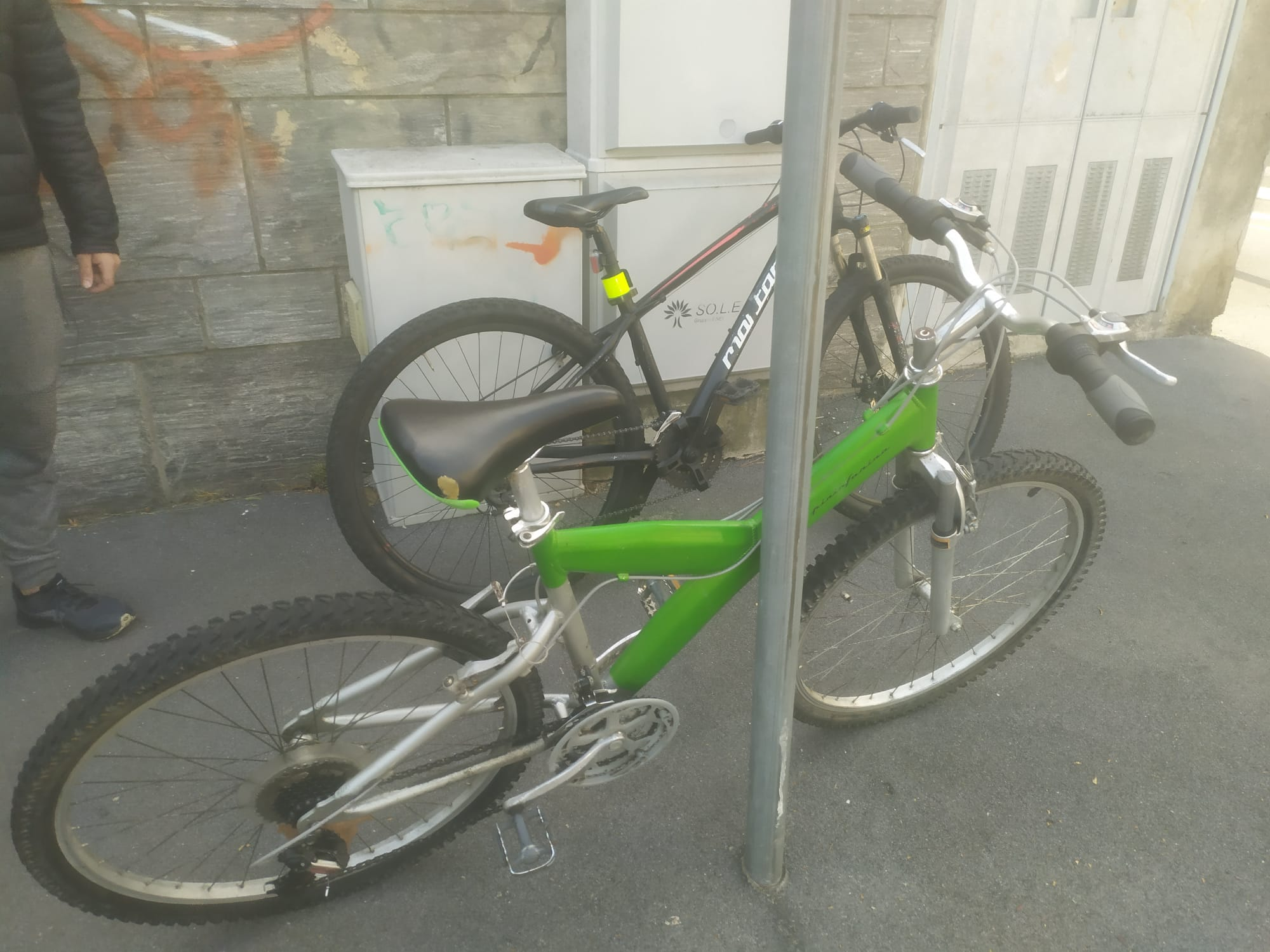 bici 14