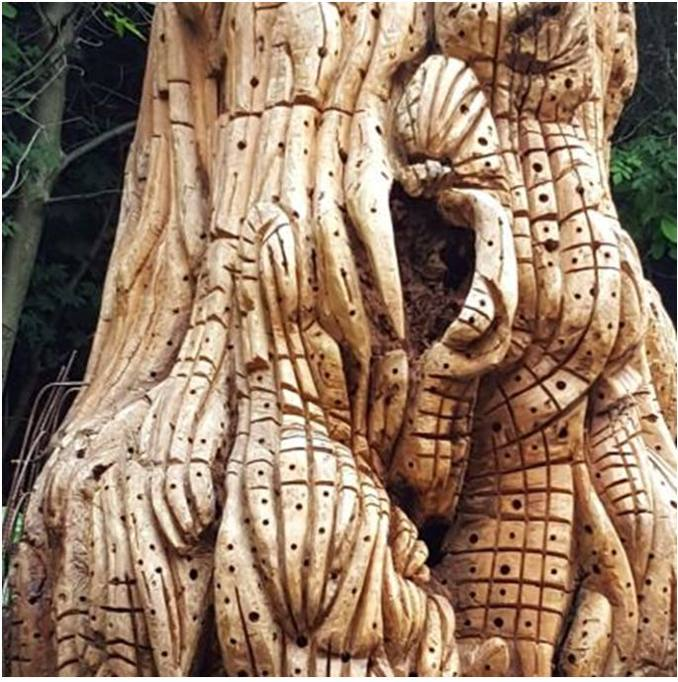 Un albero-scultura per ricordare le vittime covid e omaggiare il personale sanitario