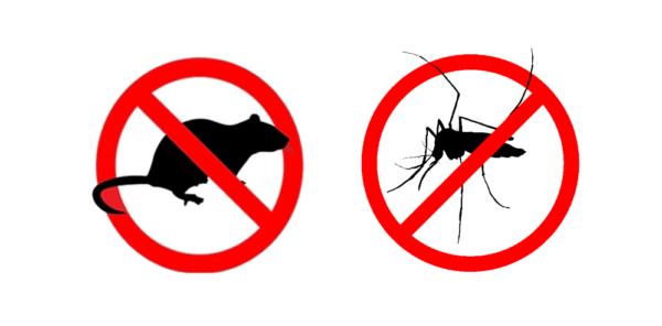 Piano 2021 per la lotta alle zanzare e ai topi