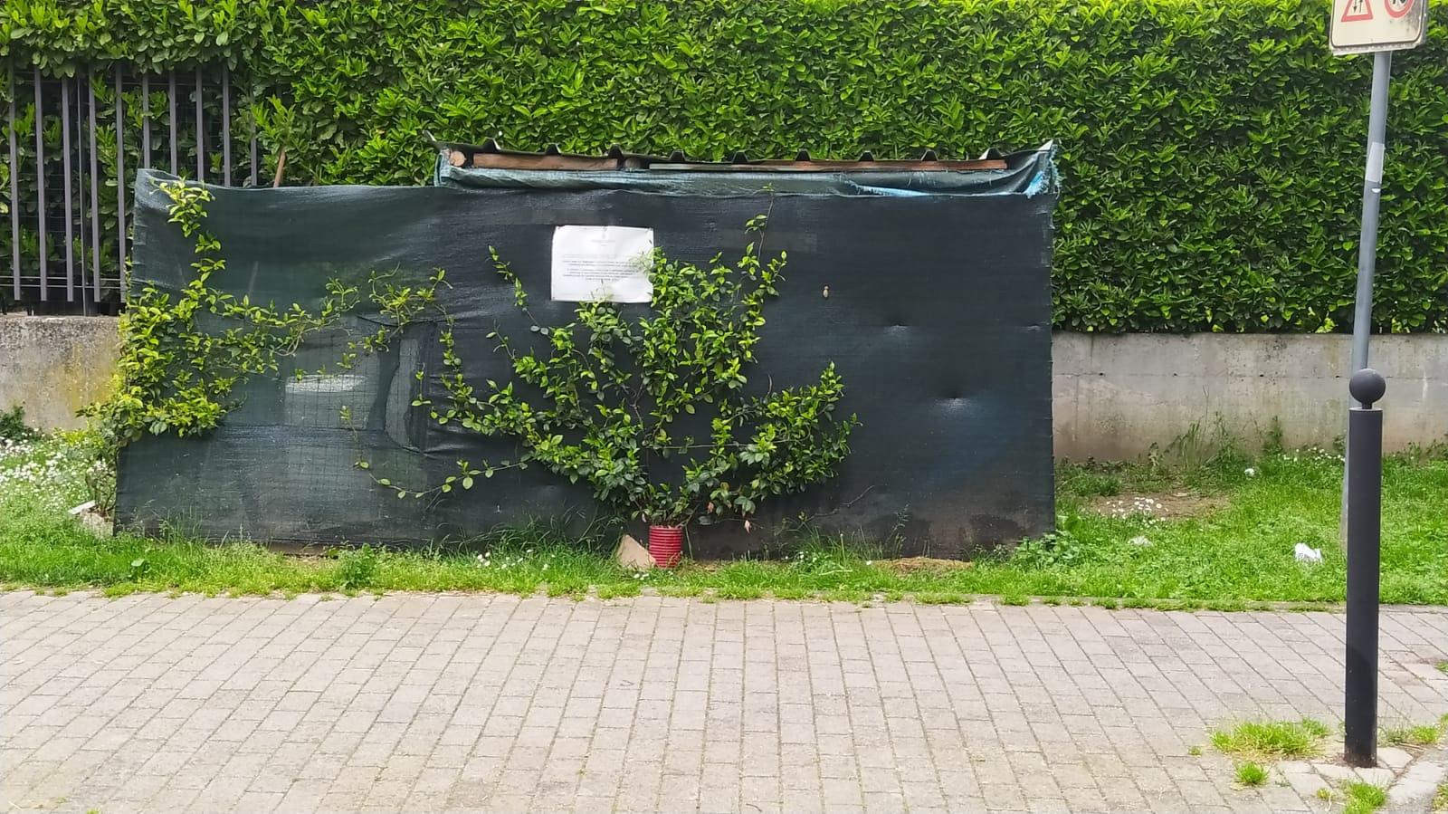 oasi felina parco Anna Frank