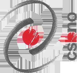 CSBNO - Culture Socialità Biblioteche Network Operativo